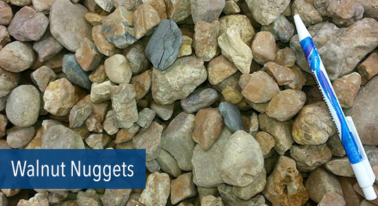 Walnut Nuggets Stone
